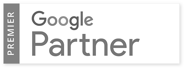 Google partner - eCommerce Training