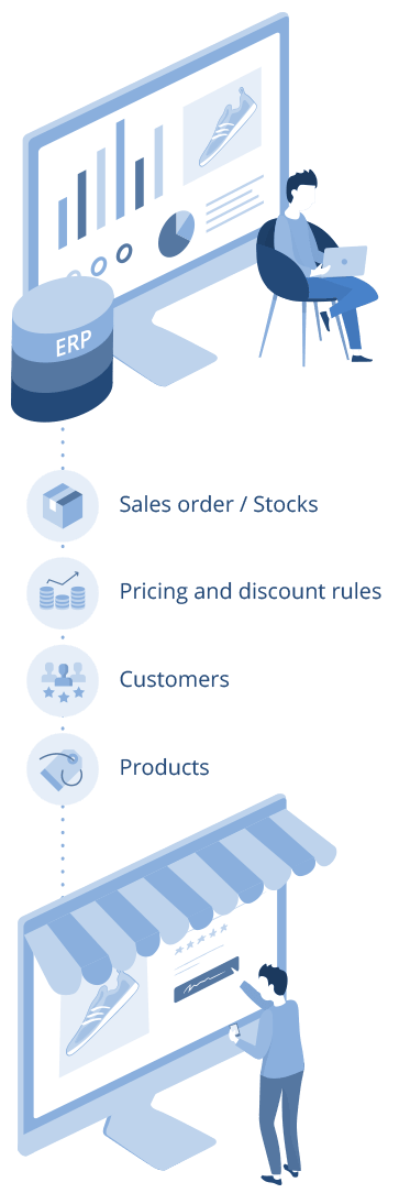 eCommerce ERP Integration - Process